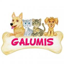 Galumis - Tienda, fotógrafos y peluquería canina