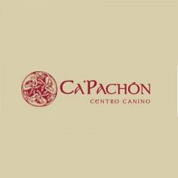 Ca Pachón - Centro canino - Residencia canina - Adiestrador de perros