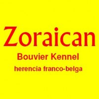 Zoraican - Criadores caninos