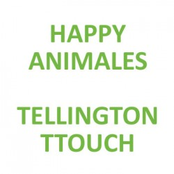 Happy Animals - Tellington tTouch - Adiestrador canino