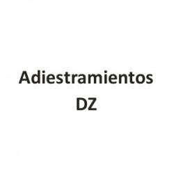 Adiestramiento DZ - Paseador canino