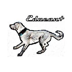 Educantgos - Adiestradores caninos