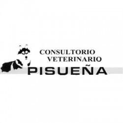 Pisueña - Consulta veterinaria