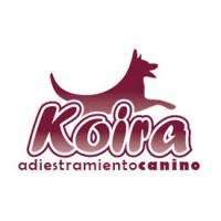 KOIRA Educación Canina