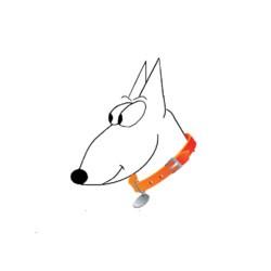 Paseadores de Albacete - Paseadores de perros