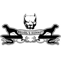 Recoil's Kennel