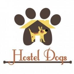 Hostel Dogs - Residencia canina - Paseador - Fotógrafo de mascotas