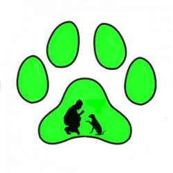 T Paseo CaniDog - Residencia y paseador canino