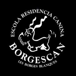 Borgescan - Residencia canina - Adiestardor y criador canino