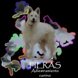 Fieras - Adiestramiento canino