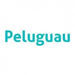 Peluguau - Paseadores y peluquería canina