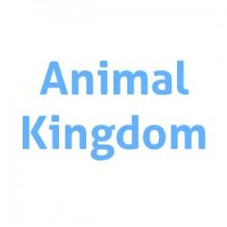 Animal Kingdom - Veterinario y peluquería canina