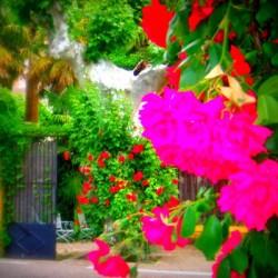 Casa Rural El Rincón del Agua