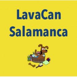 Lavacan Salamanca