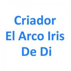 El Arco Iris De Di