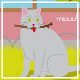 Facebook de Mi Gato es Único