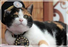 Muere Tama, la gata japonesa jefe de estación