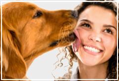 ¿Es malo besar a mi perro?