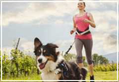 ¿Es bueno salir a correr con tu perro?