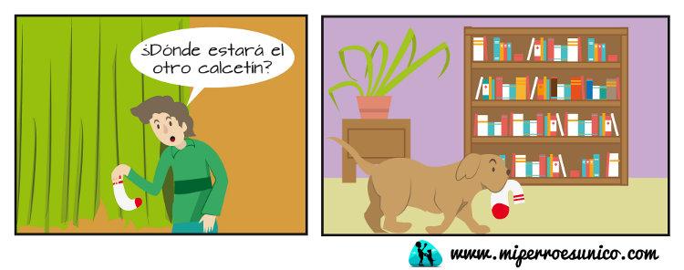El calcetín - Mi Perro Es Único