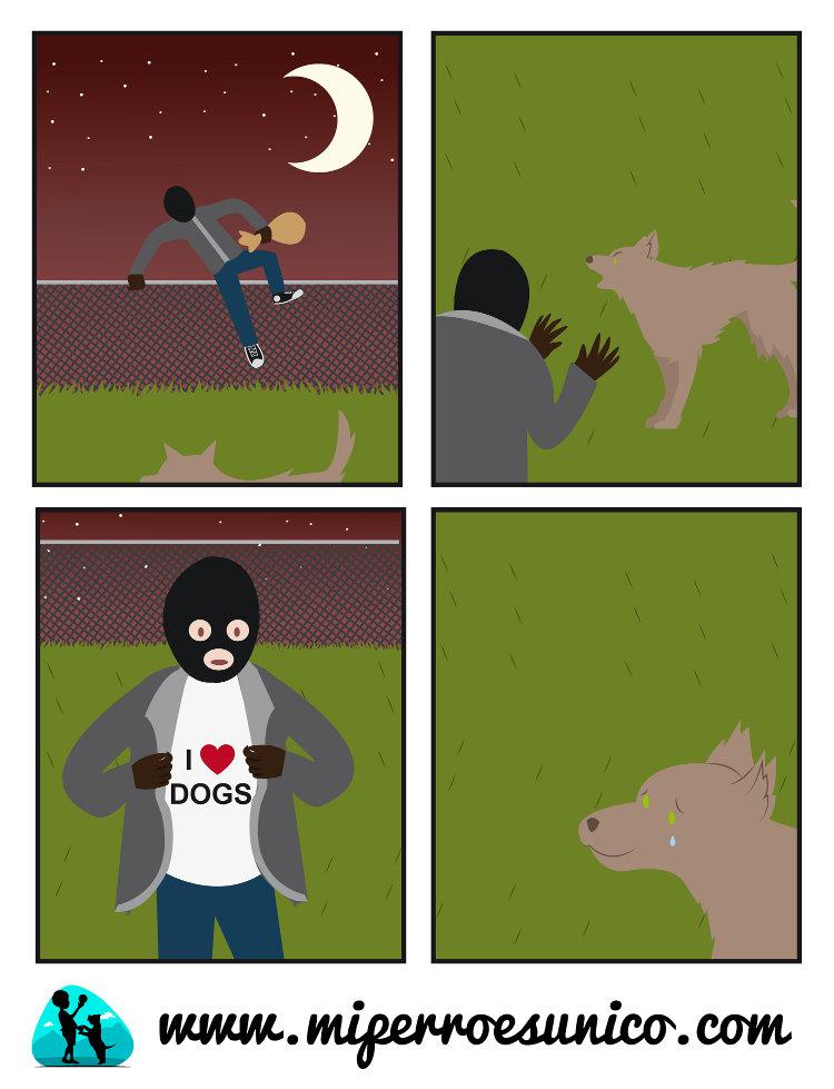 Humor entre un Ladrón y un perro guardián
