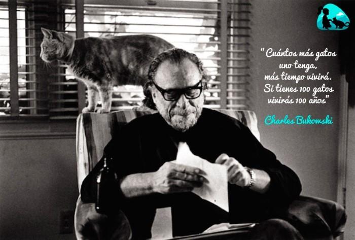 Cuantos más gatos uno tenga, más tiempo vivirá. Si tienes 100 gatos vivirás 100 años. Charles Bukowski