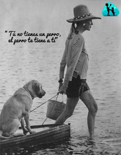 Tú no tienes un perro, el perro te tiene a ti.