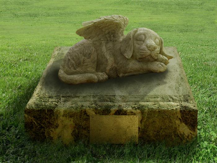 Poema sobre el cementerio de perros