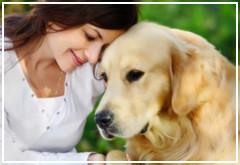 ¿Un perro puede leer nuestro rostro?