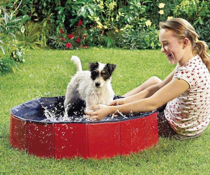 Piscina para perros con descuento la mejor manera de for Piscina para perro