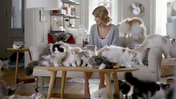 Taylor Swift y los gatos - Mi Perro Es Único