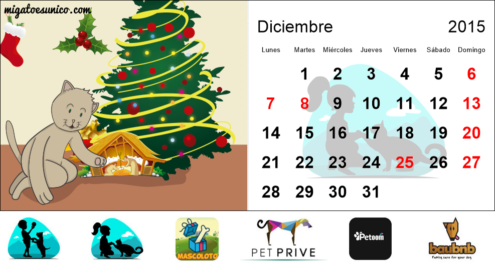 calendario 2015 de gatos -  argentina