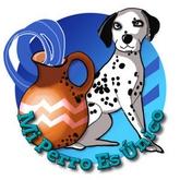 Horóscopo de perros 2016 - Signo Acuario