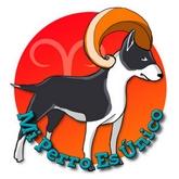 Horóscopo de perros 2016 - Signo Aries