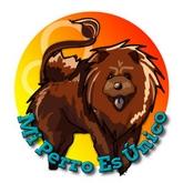Horóscopo de perros 2016 - Signo Leo
