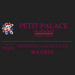Petit Palace President Castellana