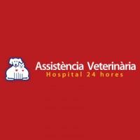 Assistencia Veterinaria