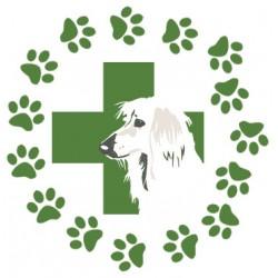 Veterinaria Alameda - Peluquería canina - Adiestrador, residencia y paseador canino