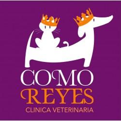 Como Reyes Clínica Veterinaria