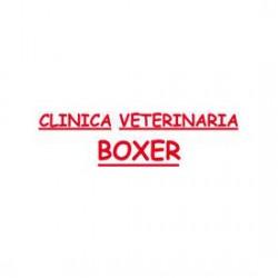 Boxer Clínica Veterianria