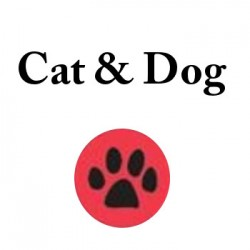 Cat and Dog - Paseadores y adiestaradores de perros