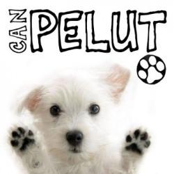 Can Pelut - Paseador y residencia canina