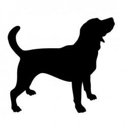 El Tuc - Educació canina en positiu